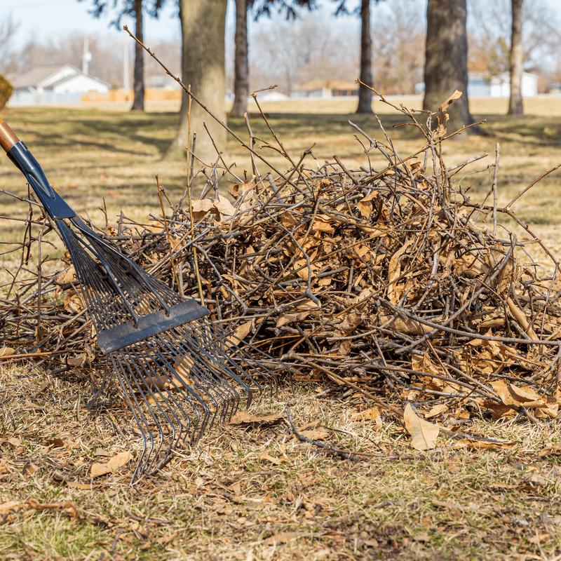 yard debris clean up